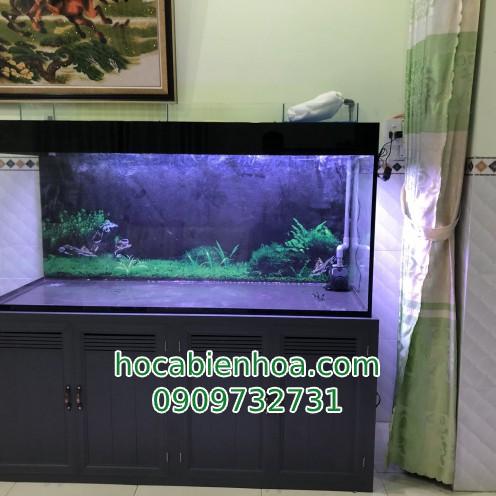 Hồ cá rồng lọc công nghệ 4 đáy chân sắt ốp nhôm