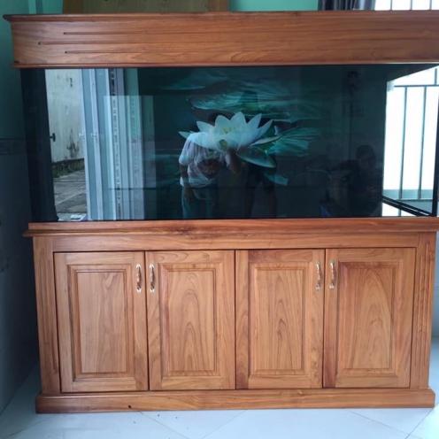 Hồ cá rồng lọc công nghệ chân tủ gỗ